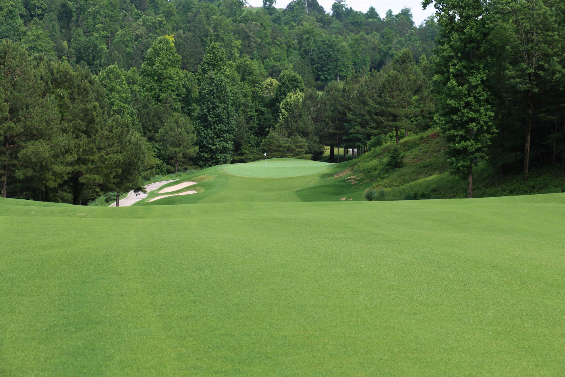 Currahee Golf Hole 15