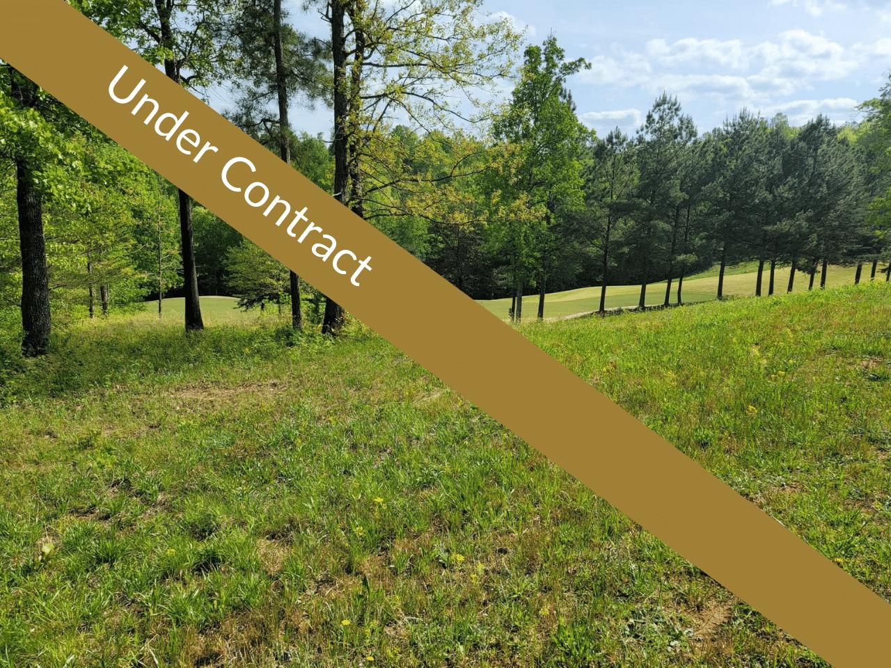 256 Golf Ridge Way Currahee Club Under Contract (2)